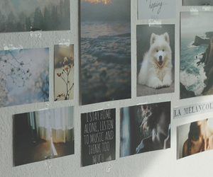 wall, photography, and room image