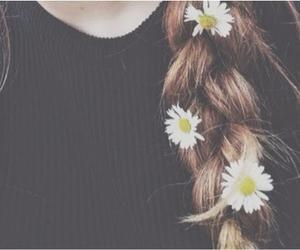 hair, braid, and daisy image