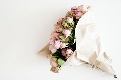 صور ورود رومانسيه   خلفيات ورد رومانسيه romantic rose