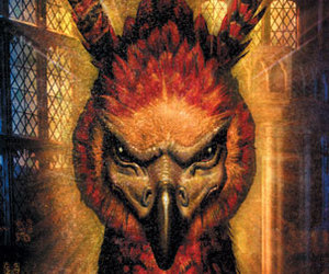 harry potter, fawkes, and fênix image