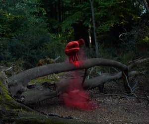 man, nature, and red image