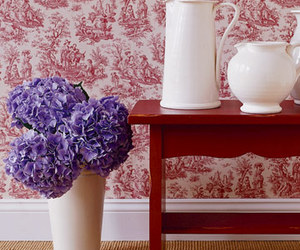 red and toile image