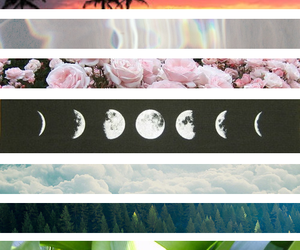 flowers and moon image