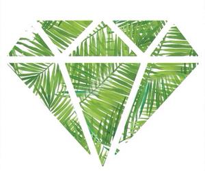 diamond, green, and palms image