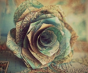 rose, map, and flowers image
