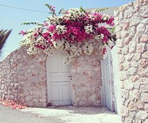 flowers, summer, and door image