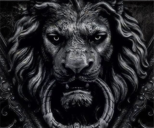 black, kitty, and lion image