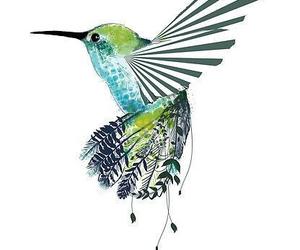 bird, art, and hummingbird image