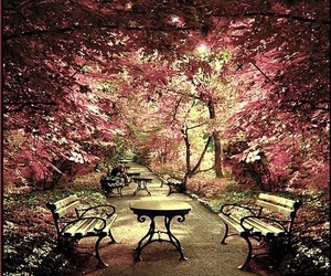 places and amanzing garden image