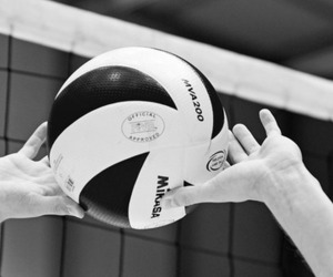 volleyball, ball, and life image
