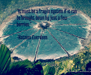 berries, quote, and katniss image