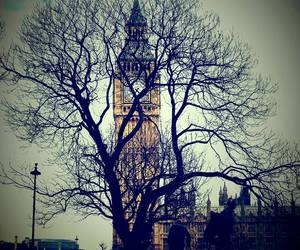 Big Ben, london, and tree image