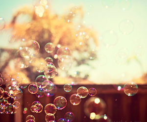 bubble, fly, and happiness image