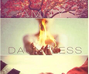 divergent, dauntless, and amity image