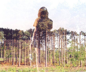 photography, double exposure, and tree image