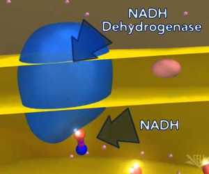 atp, science, and youtube image