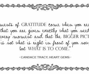 gratitude, quotes, and life image