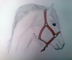 drawings, horse, and me image