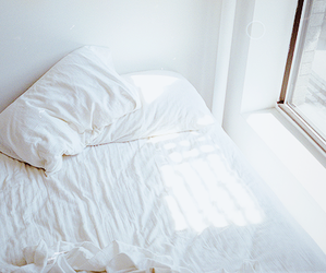 bed, window, and light image