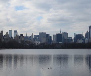beautiful, nyc, and Central Park image