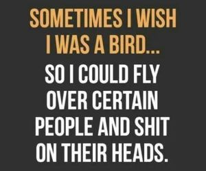 bird, shit, and quote image