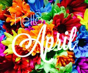 april, colorful, and flowers image