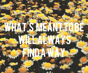 flowers, way, and believe image