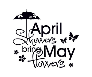 flowers, rain, and april image
