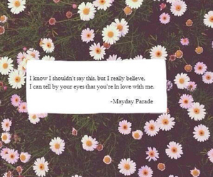 mayday parade, quote, and Lyrics image