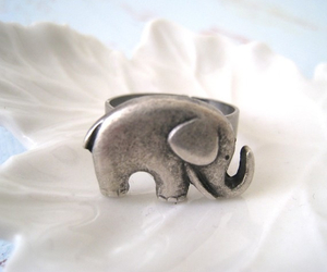 elephant, ring, and cute image