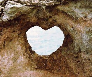 heart, nature, and like image