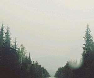 cold, mist, and road image