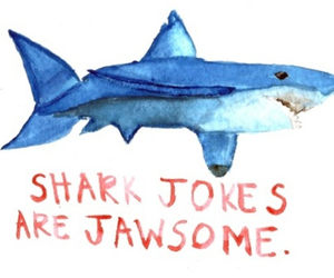 joke and shark image