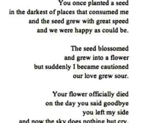 darling, meaningful, and poem image