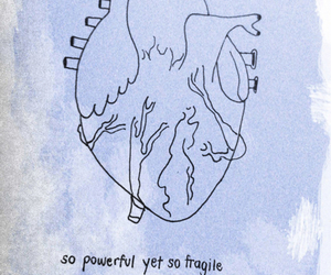 heart, quote, and fragile image