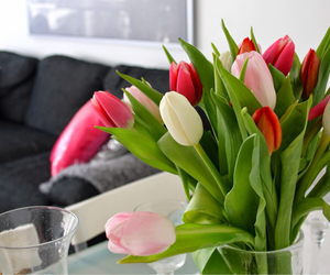 decoration, flowers, and home image