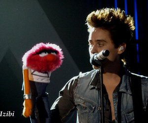 handsome, jared leto, and marioneta image