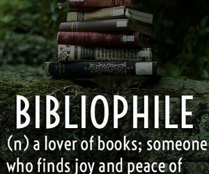 bibliophile, joy, and definitions image