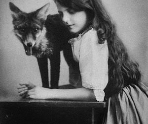 fox, vintage, and girl image