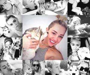 miley cyrus and floyd image