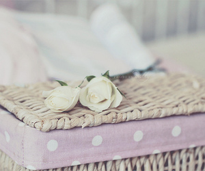 bed, dolly, and pink image