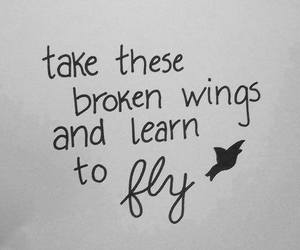 fly, quote, and wings image