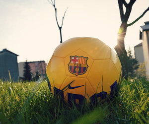 Barca, flowers, and spring image