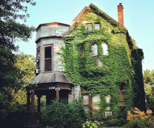 beautiful, nature, and dream house image