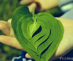 Dream, green, and heart image