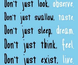 Dream, feel, and frases image