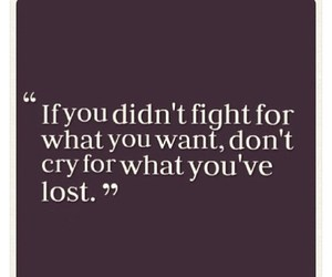 fight, lost, and quote image
