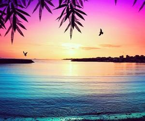 beautiful, landscape, and sunset image