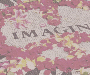 flowers, imagine, and indie image