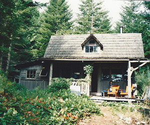 house, flowers, and forest image